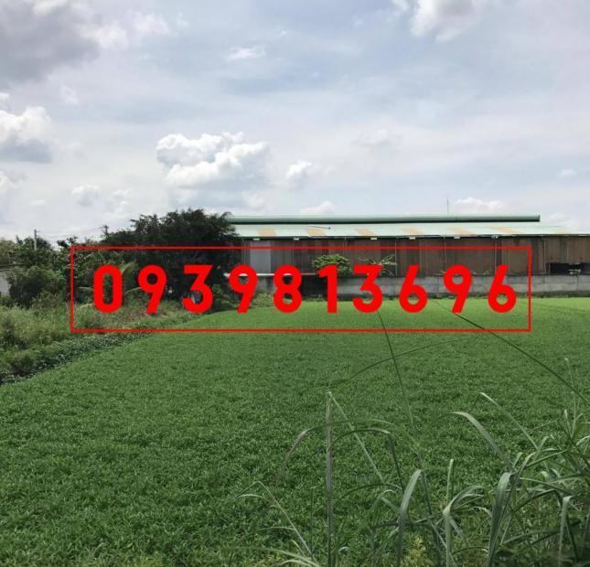 Cần Bán Gấp Lô Đất DT: 672 m2/ Giá 2.3 tỷ. X. Hòa Phú, cách TL 8: 300m, Lh : 0939 813696